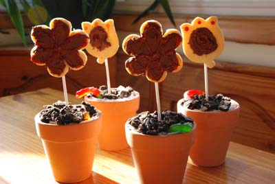 flower cookie fun