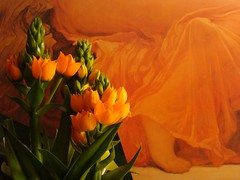 orange aid (SALLYANNE0852) Tags: flowers summer orange plant green june painting poster foot warm textile flamingjune blooming ornithogalumdubium orangestar giftsfromkate prerapaelites lordfrederikleighton