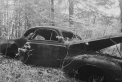 (_michael _ Jack) Tags: old usa white black chevrolet car america forest hiking north maine circa bound 1950 outward blackwhitefilm vitnage maineusajune2007 overtwoyearsold
