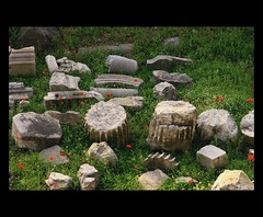 papaveri e rovine (billerbuch) Tags: rome roma ruins poppies papaveri fororomano rovine romamaggio2009