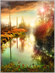 Tchernobyl ? (Jean-Michel Priaux) Tags: france color tree art water illustration forest photoshop painting landscape paint flood apocalypse dream surreal lac nuclear peinture dreaming pollution alsace mystical paysage anotherworld tchernobyl ried surraliste nucleaire priaux mywinners digitalflood vosplusbellesphotos saariysqualitypictures