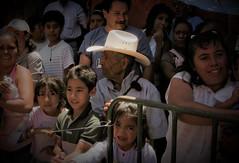 Dulces (El Señor Cacomixtle) Tags: viaje amigos méxico mexico san desfile viajes sanmigueldeallende guanajuato javi javier historia locos finde javiere sanmike cacomixtle cuaza cuazanet javiersisisimo cuazanerd señorcacomixtle monsieurcacomixtle muchogustosoyjavier cuazanert cacomixtles