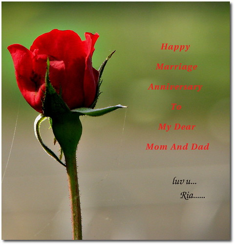 My dear mom and dad today is the 23rd marriage anniversary of my