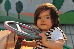 Driving girl (owen4green) Tags: trees red brown white tree green girl smile car yellow japan wall silver tile toy interestingness nikon daughter ivy littlegirl speedlight kanazawa steeringwheel ishikawa ishiguro drivinggirl d700 sb900 greenivyandtheshrine