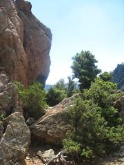 Chemin de ronde du Castellu : versant S