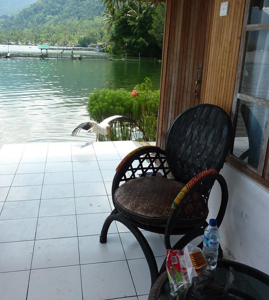 Sumatra-Lac Maninjau (17)