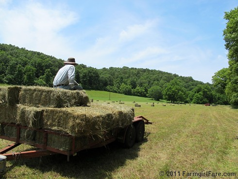 Taking a break on the hay trailer - FarmgirlFare.com