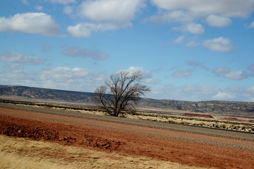 Southwestern landscape 1