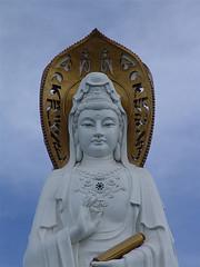 您好:请收我们雕刻的部分罗汉佛像观音等宗教图片(我中央美院嘉祥石雕厂)