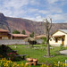 The garden of the Hotel El Maizal in Urubamba in the Sacred Valley, Peru