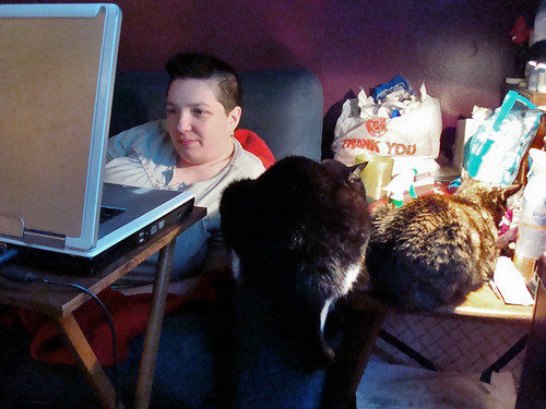 Computer, Berit, Cat Butts