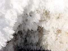Hoarfrost crystals (clickclique) Tags: winter snow cold ice hoarfrost naturesbest macromadness imagequality canons3is warmair godsartwork flickrsmileys thebeautyofnature imagesofharmony superamazingshots macroisbeautiful doubledragonaward flickrpicturesthatwowus