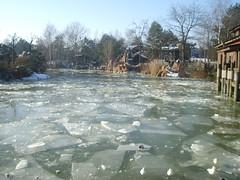 Frozen lake in frontierland (bratislabat) Tags: disneyland disney frozenlake frontierland