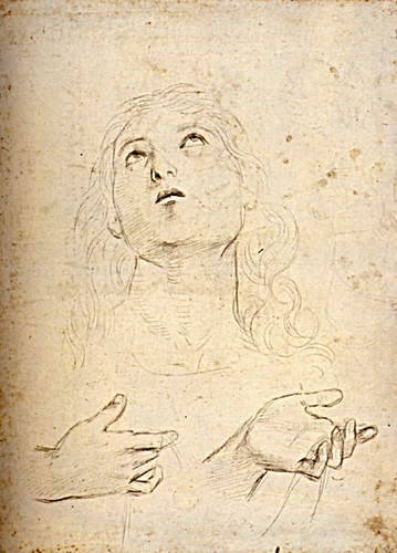 1504  Raphael    Study for the head of St Thomas  Metalpoint on white repared paper  26,8x19,6 cm  Lille, Musée des Beaux-Arts