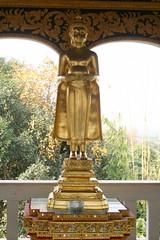 20080316_0636  Wat @ Ban Mae Taeng,วัดบ้านเด่นสะหรีศรีเมืองแกน (ol'pete) Tags: hall buddha buddhist statues buddhism images chiangmai canoneos350d lanna thialand assemblyhall buddhastatue buddhaimage เชียงใหม่ ประเทศไทย maetaeng 5photosaday รูปปั้น wihan lannastyle buddharupa worldtrekker วิหาร ศาสนาพุทธ อแม่แตง พระพุทธเจ้า พุทธศาสนิชน bantaeng วัดบ้านเด่นสะหรีศรีเมืองแกน lannaart วัดเด่นสะหรีศรีเมืองแกน watdensareesrimuanggaen พระพุทธเจ้ารูปปั้น amaetaeng doilopete peterwrichards