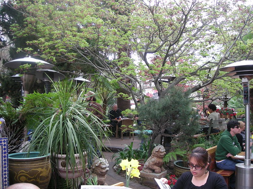 Garden Dining at the Tower Cafe