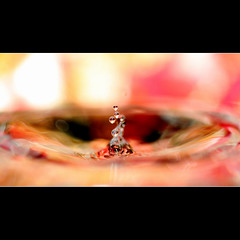 Water sculpture (JannaPham) Tags: pink sculpture test macro water canon scarlet garden eos golden droplets drops spring colorful pretty purple sunday 5d markii  hss   project365 flickrsbest  64365 bratanesque flickrlovers jannapham