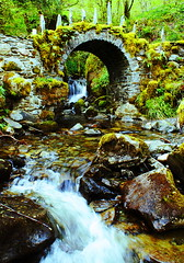 the fairy bridge (river-view) (macgruff .. on / off !! V/Busy) Tags: bridge red mountains west colin last forest river james scotland landscapes waterfall highlands woods woodlands walks scottish lodge glen na trail fairy stewart waterfalls fox campbell forests jamesstewart fas ure appin westhighlands scottishhighlands argyleandbute clansman scottishmountains colincampbell cloiche scottishlandscapes coille mountainrivers glencreran glenure theredfox fasnacloiche scottishwoodlands thefairybridge scottishwalks scottishforests glencreranandglenure glenurelodge jamesstewartoftheglen appinmurders thelastclansmantrail coillemheadonach mheadonach