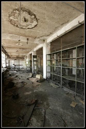 Barren Halls 1