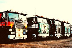 Cabovers, looks in 1988: Freightliner, White, Kenworth, Peterbilt (Polo Scher) Tags: white truck vintage eagle wheels bulldog semi international 1989 mack coe peterbilt 18wheeler kenworth bigrig freightliner cabover pasttimes