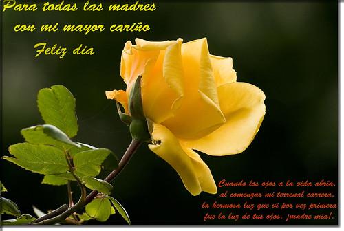 Madres del Mundo Feliz Dia de las madres 3496498040_5712ecb53b