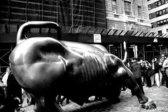 The Bull (Bjorn Borgers) Tags: newyork manhattan financialsector