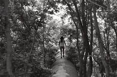 Maria (horizonlights) Tags: trees bw white black texas minolta kodak fort maria tx pipe jungle 400 worth morales x570