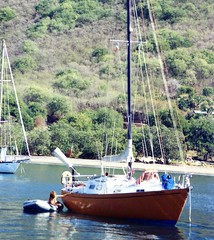 910401 Hiva Oa clean-up (rona.h) Tags: cacique hivaoa marquesas ronah vancouver27 bowman57
