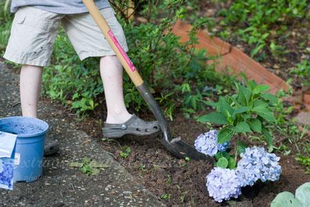 gardening_Jun162009_0003web