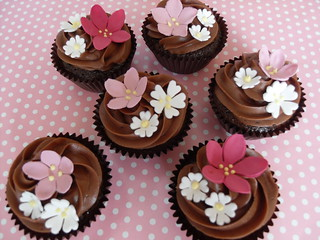 Choc cupcakes by Cotton and Crumbs
