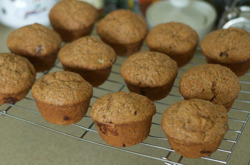 first peach muffins 2010