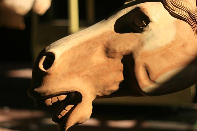 kuda kayu