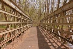 Four Seasons ([-Sherri-]) Tags: bridge shadow sun primavera nature soleil spring ponte sole sherri holidaysvacanzeurlaub