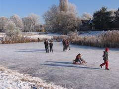 IMG_2995 (EllenElemans) Tags: bosschebroek winters wintersfeer schaatsgymhbbcentrum
