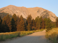 Road to Fairy Lake (Penwells (historical), Montana, United States) Photo