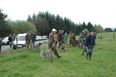 Boots, boots... and boots ! (iveka19) Tags: chien france dogs contest hunting rubber wellington hunter gumboot gummistiefel chasse bota botta gumy ruralit