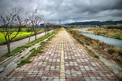(BeAsT#1) Tags: sky flower clouds photoshop river taiwan panasonic 24mm 2009 新竹 hdr 新埔 f20 lx3
