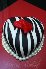 Zebra Desenli Pasta