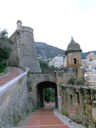 Monaco_castle_03