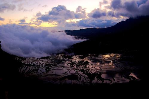 Yuanyang Sunrise