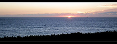 A Corua (Canoso.) Tags: sea panorama mer tree atardecer mar corua meer mare dusk panoramic galicia rbol dmmerung crpuscule arbre rvore ocaso baum panoramique crepsculo asse crepuscolo panormica panormica   canoso  saveearth panoramisch