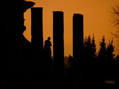 Tramonto al Foro (Flynjoy) Tags: sunset roma silhouette tramonto foriimperiali controluce fororomano centrostorico storia archeologia