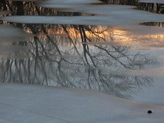 Melt-Water Sunset (AntyDiluvian) Tags: winter sunset snow reflection ice pond melting suburban massachusetts melrose suburb bostonist ellpond