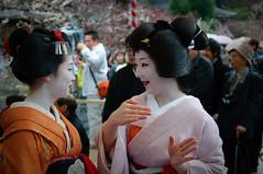Baikasai (hayleycasa) Tags: japan kyoto maiko geiko geisha baikasai naokazu umechika