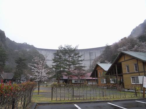 09-03-22【桜】@奈良県下北山村-03
