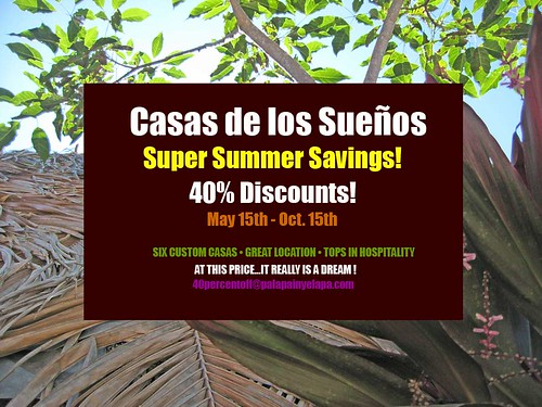 summer discount!