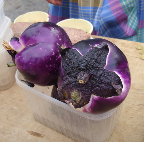 Big fat round eggplants
