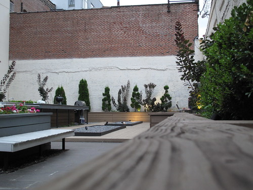 Brooklyn courtyard