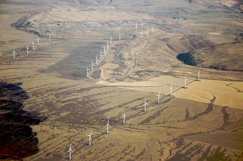 Windmills windmills windmills by Sam Beebe / Ecotrust