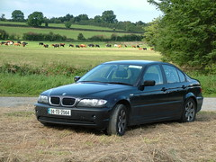 BMW in the Hay